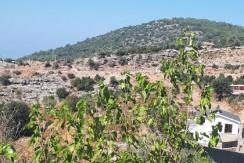 450 SQM LAND for SALE – Ölüdeniz faralya Kirme area